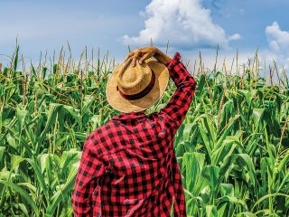 By the turn of the 20th century, emancipated slaves and their descendants had amassed 14 million acres of land. Per capita there were more Black farmers than white farmers. Owning land represents freedom for African American farmers—proof of ownership in this country.
